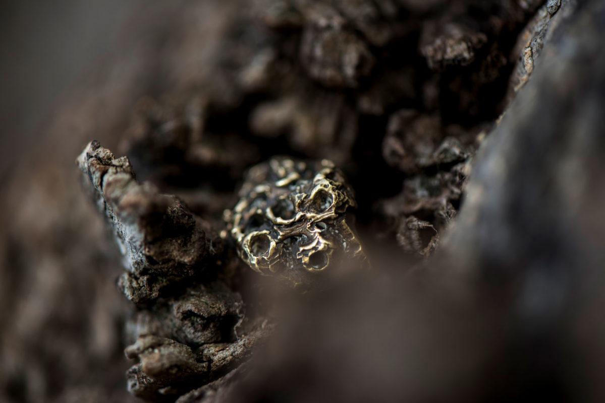 Doctum Doces Ring Still Life Puglia