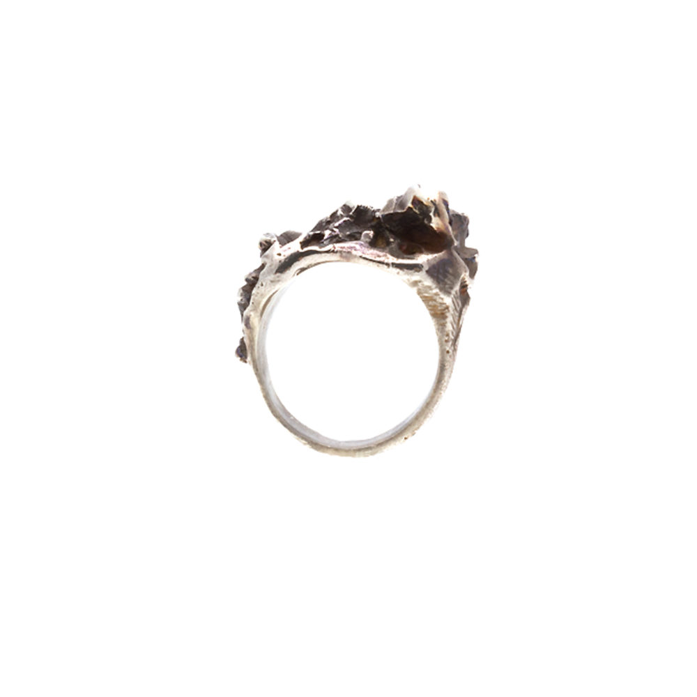Doctum Doces Collection inlay-ring-silver-front-view