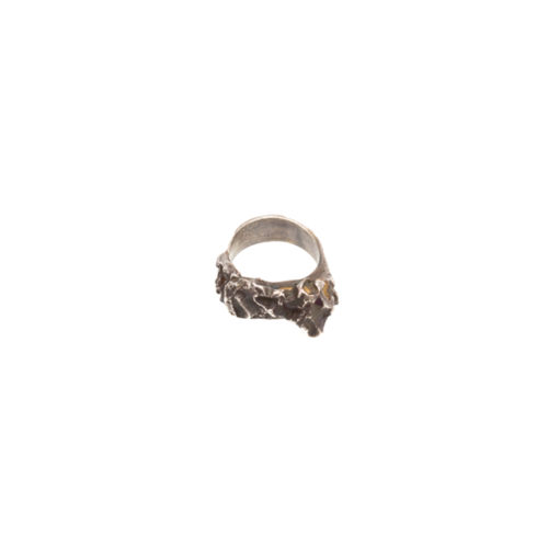 Doctum Doces Collection inlay-ring-silver-side-b