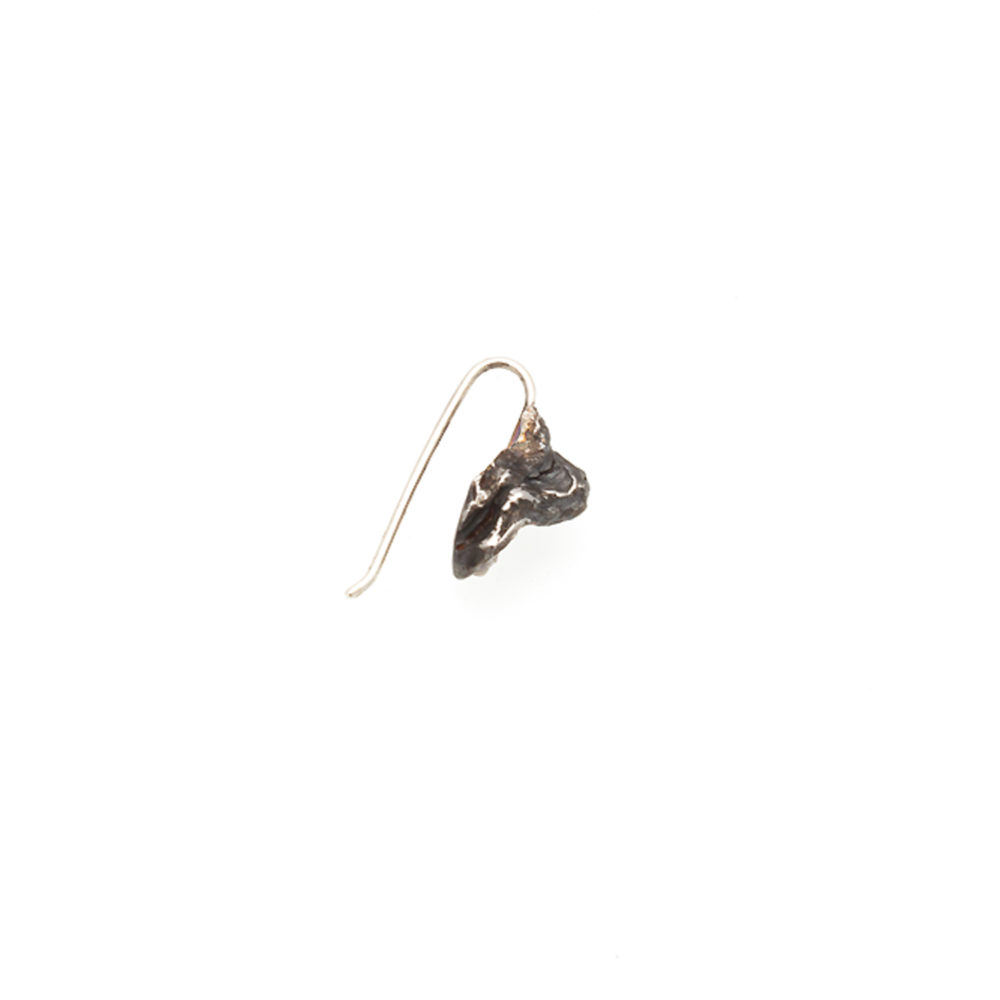 Doctum Doces Collection bark-charm-earring-silver-right-side