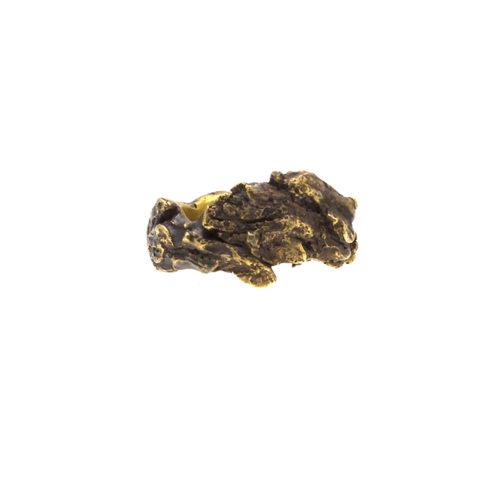 Doctum Doces Collection bark-ring-4-brass-front-view