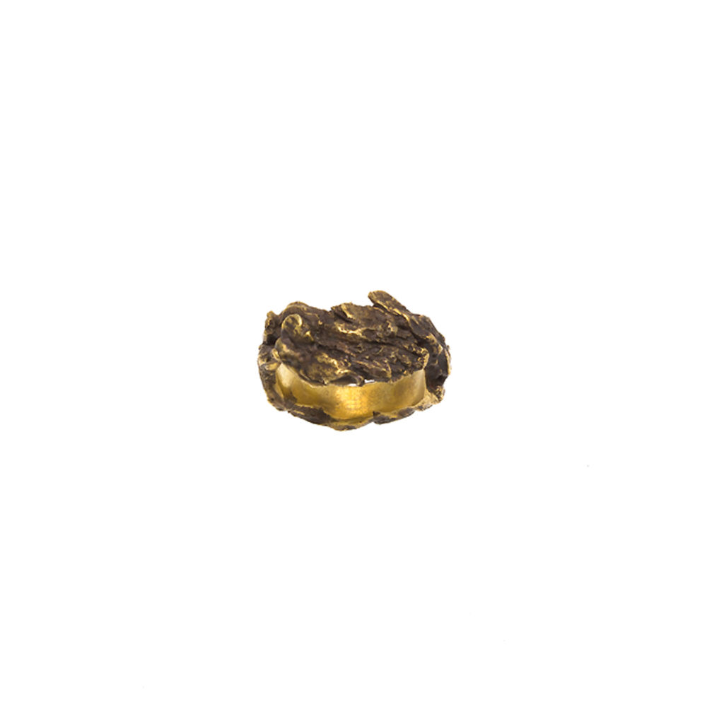 Doctum Doces Collection bark-ring-4-brass-top-view