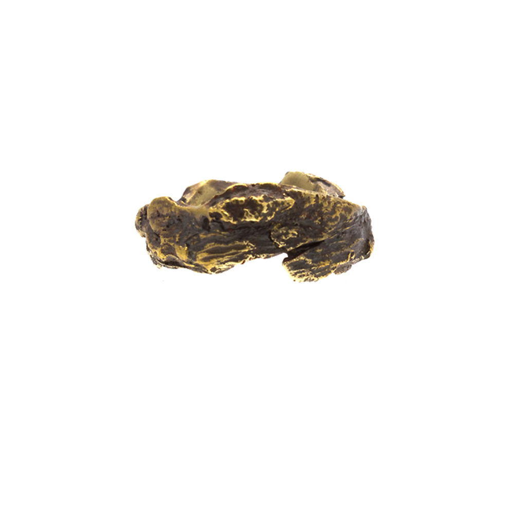 Doctum Doces Collection bark-ring-6-brass-front-view