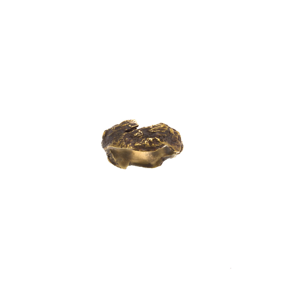 Doctum Doces Collection bark-ring-6-brass-top-view