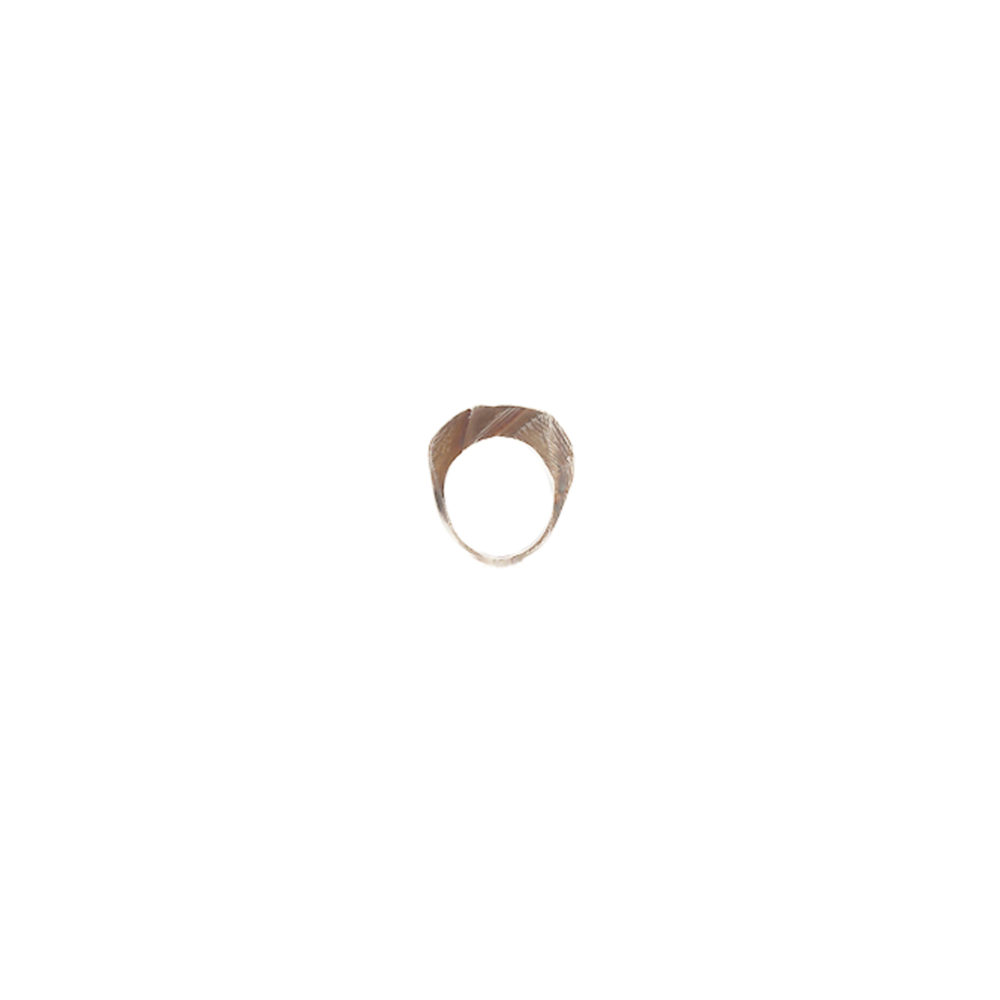 Doctum Doces Collection shake-ring-1-silver-side-b-front-view