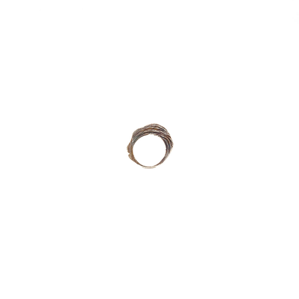 Doctum Doces Collection shake-ring-2-silver-front-view-side-b