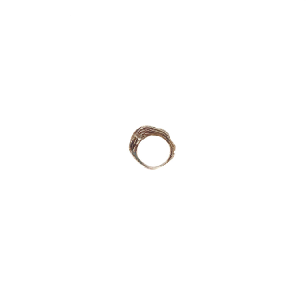 Doctum Doces Collection shake-ring-2-silver-side-b-front-view