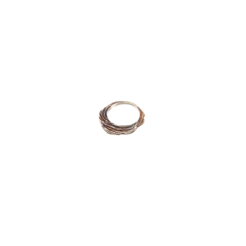Doctum Doces Collection shake-ring-2-silver-side-b-top-view