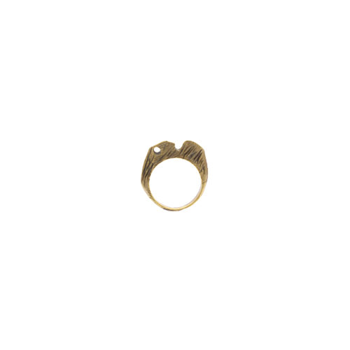 Doctum Doces Collection shake-ring-4-brass-front-view-side-a