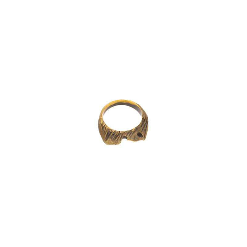 Doctum Doces Collection shake-ring-4-brass-top-view-side-b