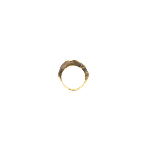 Doctum Doces Collection shake-ring-5-brass-front-view-side-a