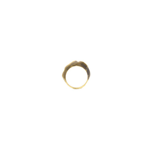 Doctum Doces Collection shake-ring-5-brass-front-view-side-b